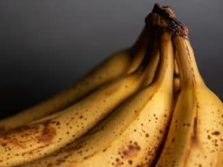 Zralý banán přitahuje octomilky