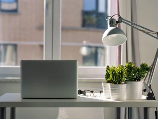 Pracovní stůl s pokojovkou